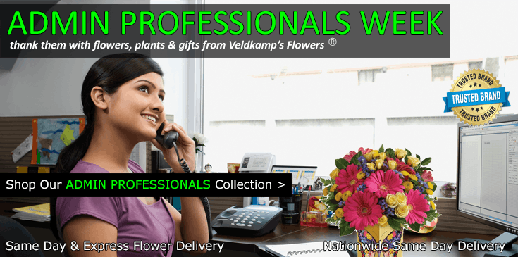 Shop at Veldkamp's Flowers for the best selection of Administrative Professionals gifts, flowers and plants in Denver, Colorado.