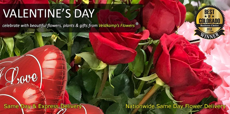 Shop Veldkamp's Flowers for the best selection of Valentine's Day flowers, plants and gifts in Denver, Colorado.