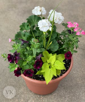 Outdoor Patio Pot