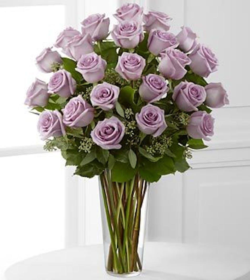 Lavender Roses Denver Lavender Roses Denver Co Lavender Roses