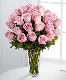 Premium Long Stem Roses - Pink'