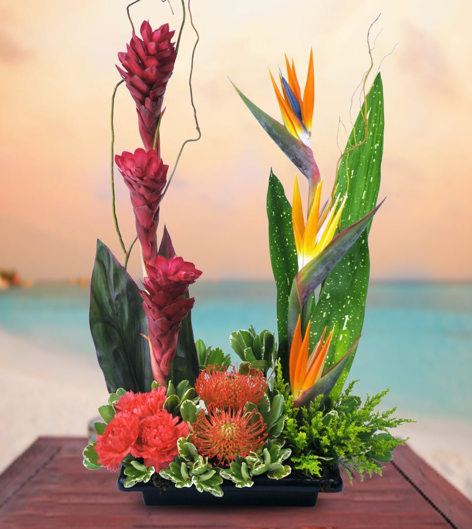 Tropical Sunset: Tropical Floral Bouquet - Veldkamp\'s Flowers ...