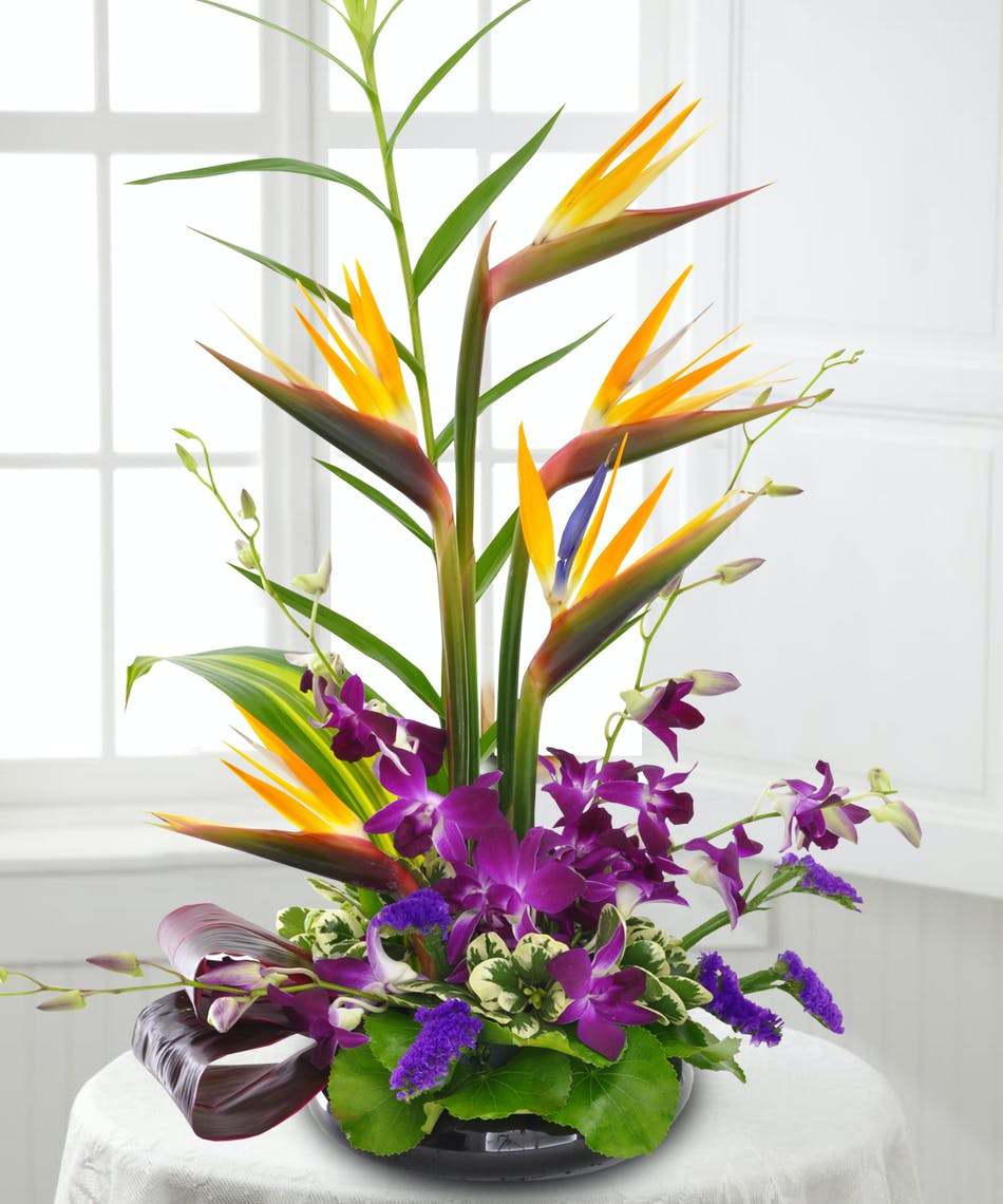 Garden in Paradise: Tropical Flower Arrangement - Veldkamp\'s Flowers ...