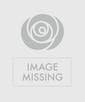 Cremation Wreath Red, White & Blue