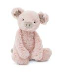 Bashful Pig