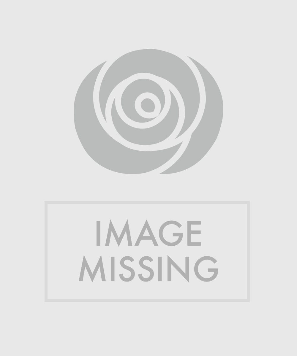 Beyond Blue Bouquet Blue White Floral Bouquet Veldkamp S Flowers Denver Florist Fresh Cut Flowers Nationwide Same Day Flower Delivery