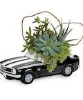 Chevy Camaro Plant Garden