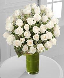 48 Premium Long Stem Roses