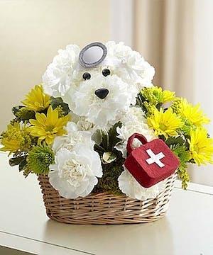 Carnation Doggie Doctor