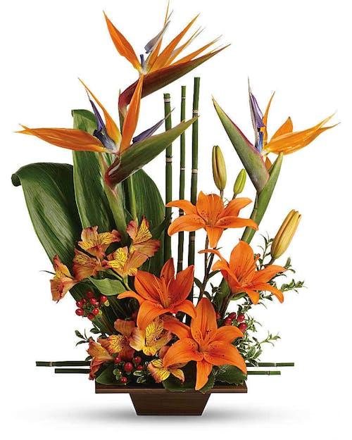 Exotic Grace Bouquet