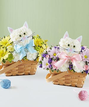 1-800 Flowers Baby Collection