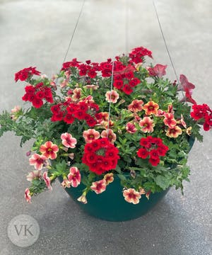 Outdoor Hanging Basket