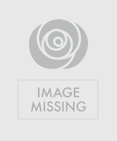 Luxury Floral Designs, Denver Florist