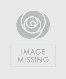Peach Roses in a Fireside Basket