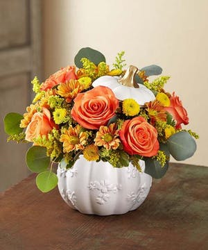 1-800 Flowers Fall Collection