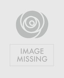 Red Roses in a Fireside Basket