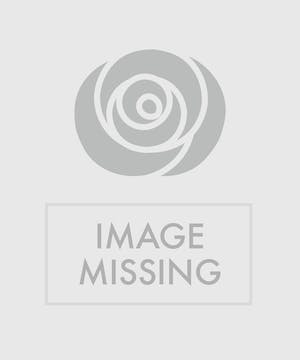 White Satin Cross Accented wtih Red Roses