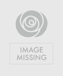 Red and White Roses in a Fireside Basket