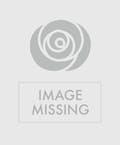 Romantic Twist Rose Bouquet