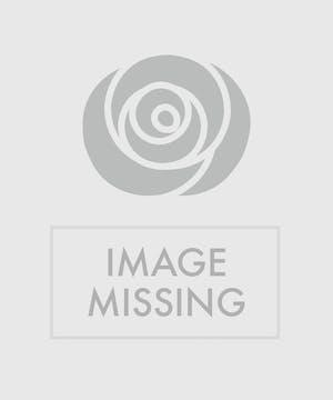 Modern Pink Rose Bouquet