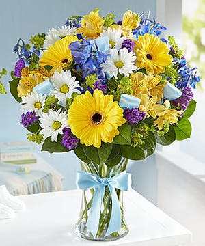 1-800 Flowers New Baby Collection
