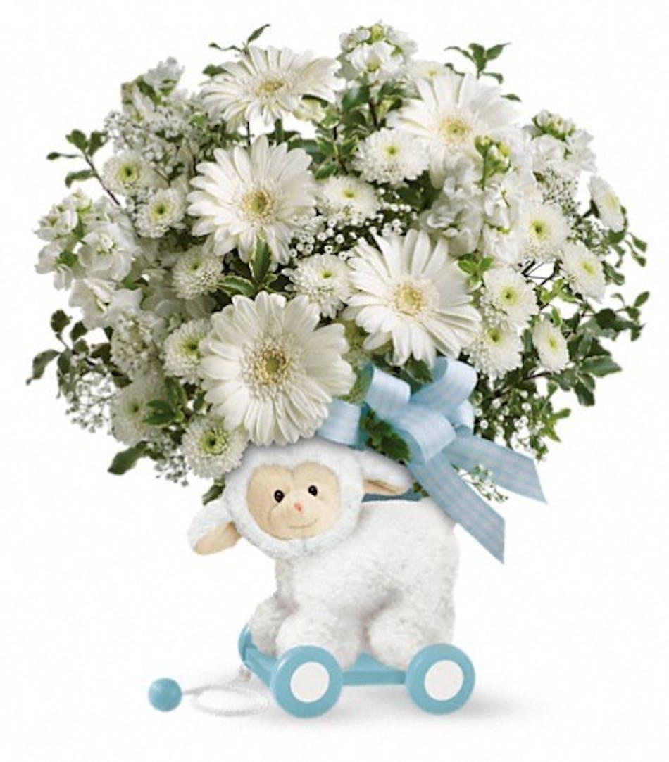 Sweet Little Lamb Baby Boy Baby Boy Flowers Veldkamps Flowers