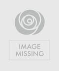 White Rose & Orchid Bouquet