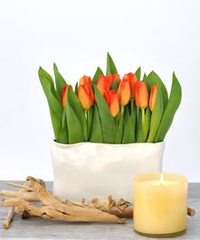 Orange Tulip Bouquet